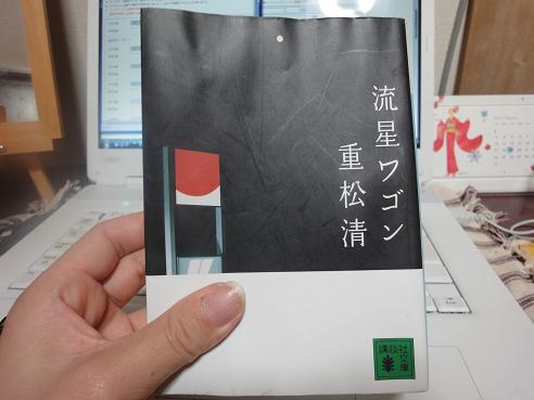 010_20100105214918.jpg
