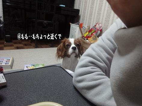 013_20091202225417.jpg