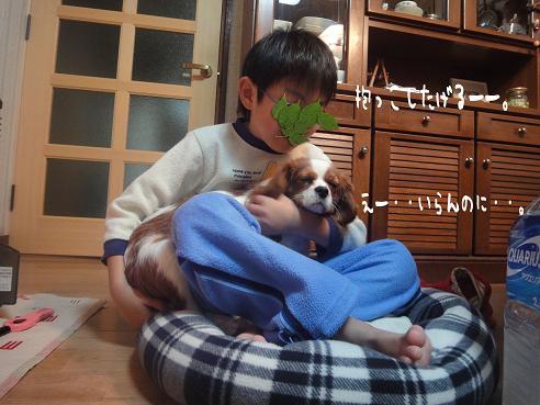 013_20100113222624.jpg