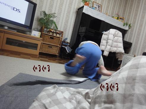 022_20100117221051.jpg