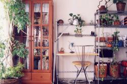 昔の家ブログ