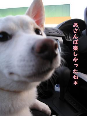 宮川さんぽ5