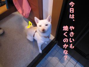 焼き芋ハンター4