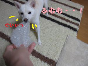 ぷちぷち2