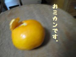 mikan1.jpg