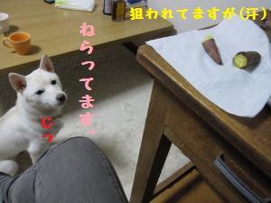 yakiimo3.jpg