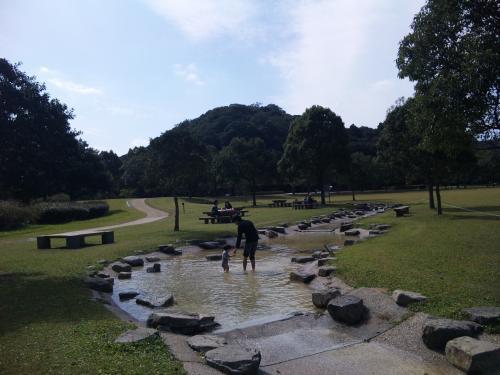 緑地で水遊び