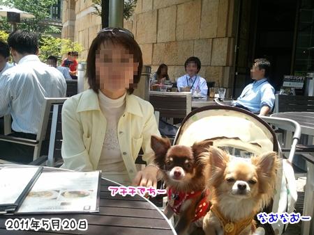 2011-05-20 12_38_50