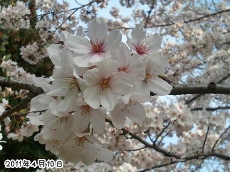 2011-04-10 15_46_34