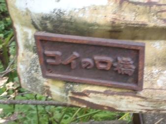 P9090083.jpg