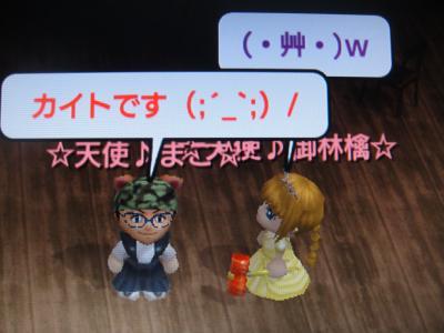 DSC01206_convert_20100104121455.jpg