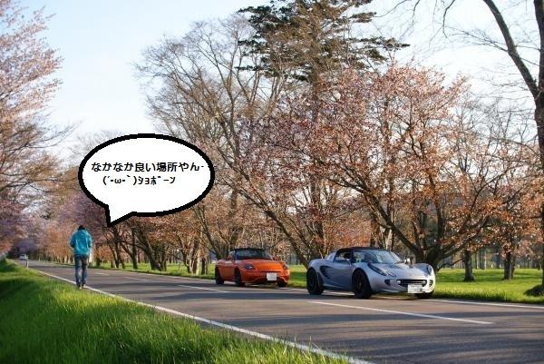 DSC00027_convert_20110519170002_1.jpg