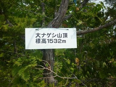 P1030870-1.jpg
