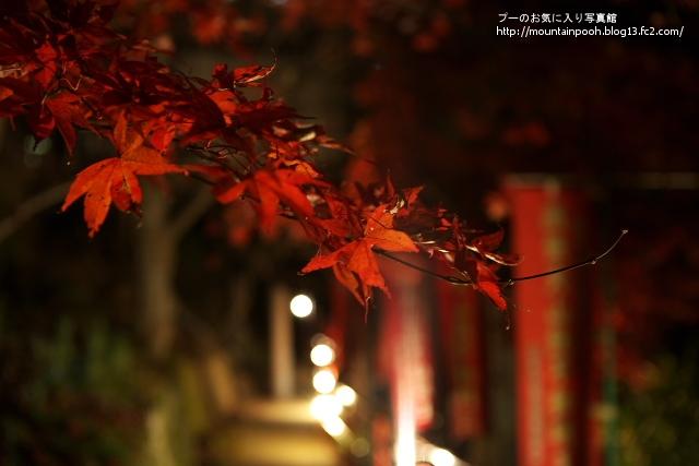 大山寺紅葉8