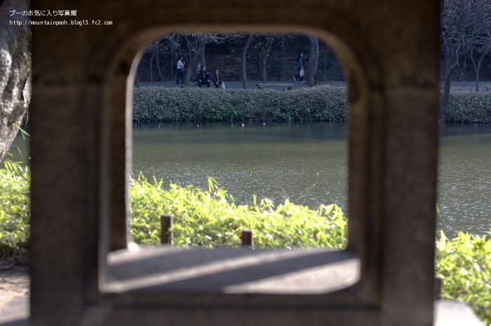 IMG_9453.jpg