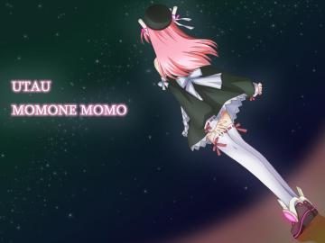 Kosmos,Cosmos-momo