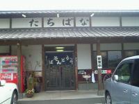 tachibanaasakura01.jpg