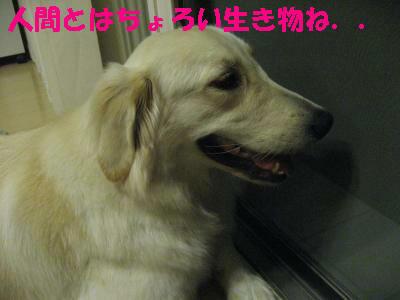IMG_4714.jpg