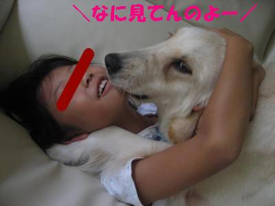 IMG_4730_convert_20090929003504.jpg