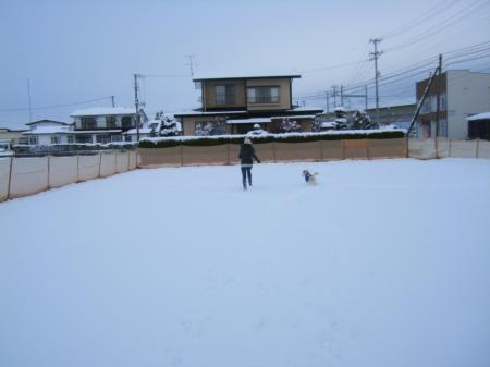 ビバ雪っこ4
