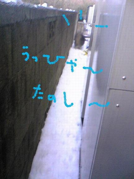 Image658.jpg