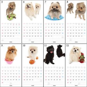 THE DOGカレンダー2012