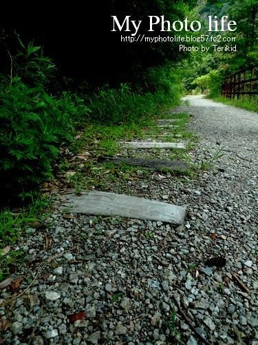 福知山廃線跡(ハイキング)2