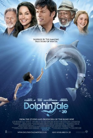 dolphintale.jpeg