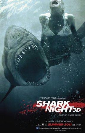 sharknight.jpeg