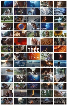 treeoflife.jpeg