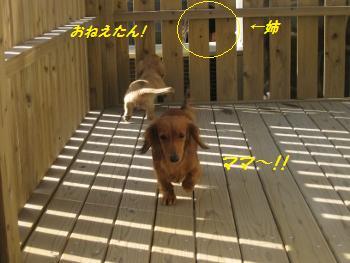 oyako27.jpg