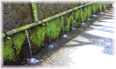 富士山の名水