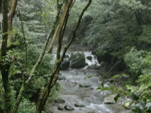 7月28日小滝