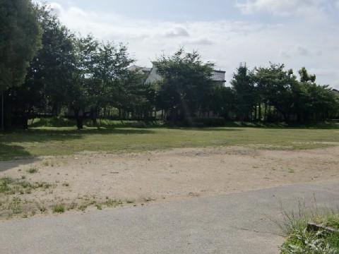 7月30日桜南公園