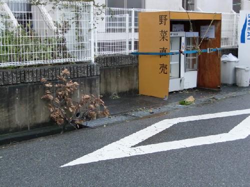 10月8日台風6