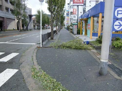 10月8日台風7