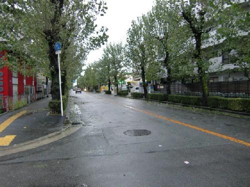 10月8日台風8