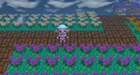 交配花もびっしり
