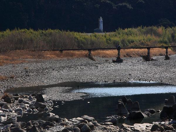 top-tondagawa11.jpg