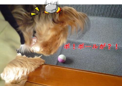 ボールが!!
