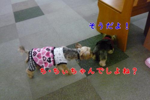 ナナ&ちぃ