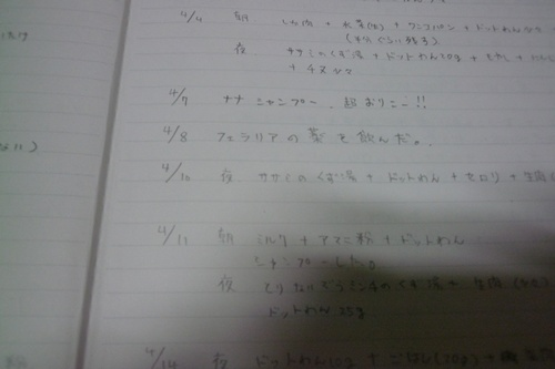 ナナ日記2