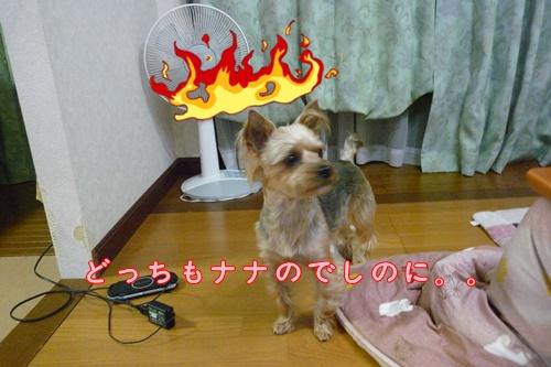 なにゆえ!!