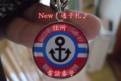 迷子札New