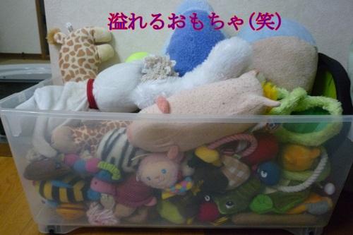 溢れるおもちゃ