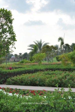 アブダビ 公園