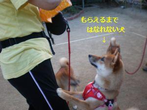 004_20100614020117.jpg