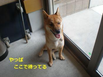 004_20100803222109.jpg