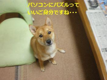 006_20100927131927.jpg