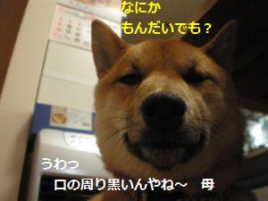 008_20100520114213.jpg